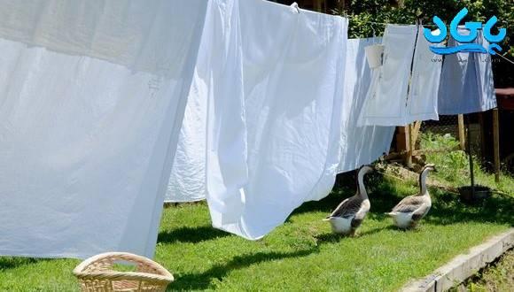 پودر لباسشویی